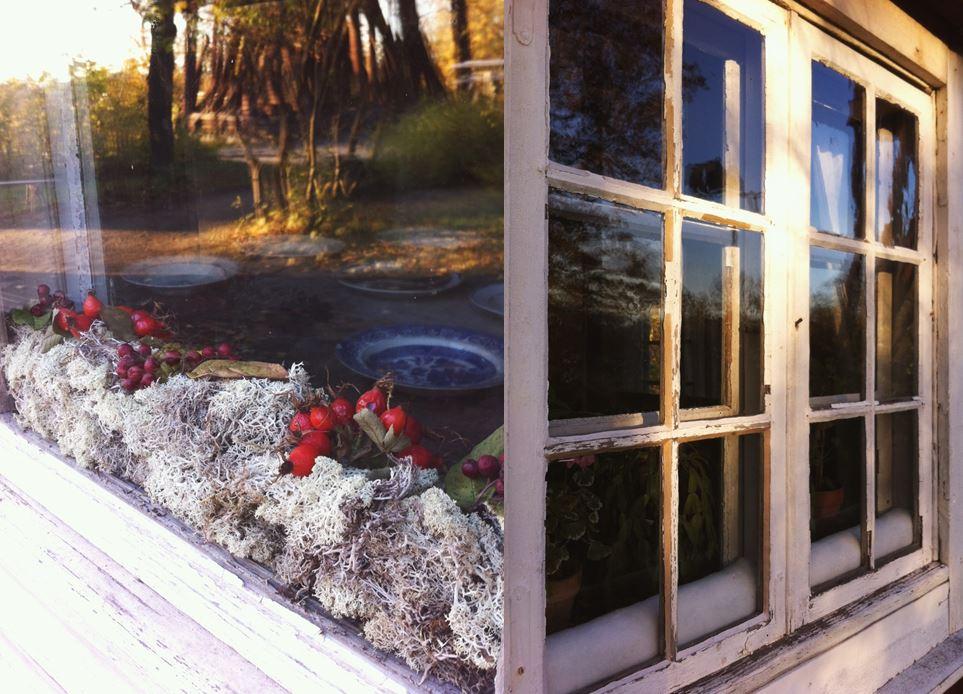 Vadd och mossa mellan innanfönster i Statarlängan. I den vänstra lägenheten använder familjen vitmossa som dekorerades med nypon. I den högra lägenheten har familjen Carlsson vadd. Foto: Sandra Åberg