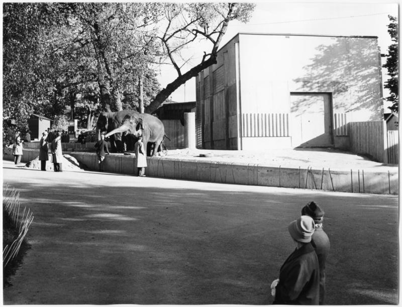 Foto av Elefanthuset som finns i Arkitektur och Designcentrums samlingar.